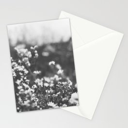 Vintage Meadow Stationery Cards