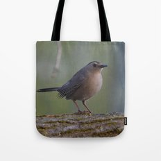 Gray Catbird near Sunrise Tote Bag