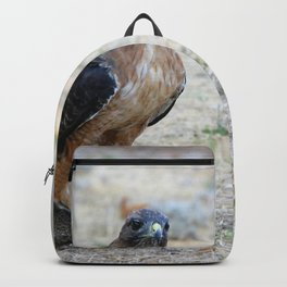 Red Tailed Hawk Catch Backpack