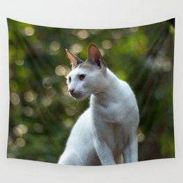 cat pose Wall Tapestry