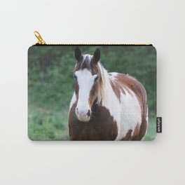 Tennessee Painted Pony Carry-All Pouch