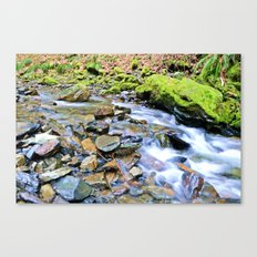 The Beauty Of Water In Slow Motion Canvas Print
