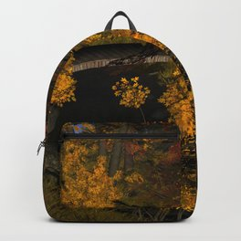 Autumn Leaves and Stream Backpack