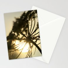 Lace Silhouette Stationery Cards