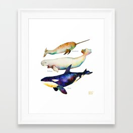 Best Buddies - Narwhal, Beluga & Orca Killer Whales Framed Art Print