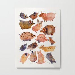 Pig Collection Metal Print