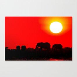 Elephant evening - Africa wildlife Canvas Print