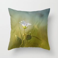 Cerastium fontanum subsp. vulgare  Throw Pillow