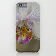 Orchid Slim Case iPhone 6s