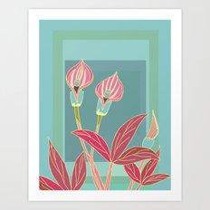 Arum Lilies II. Art Print
