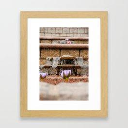 Fountain Flowers Framed Art Print