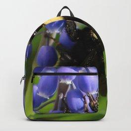 Bumble Bee on Grape Hyacinth Backpack