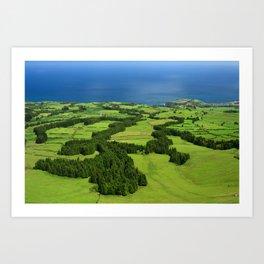 Typical Azores landscape Art Print