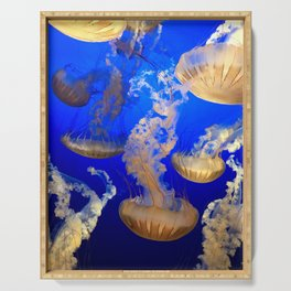 Sea Nettles Serving Tray