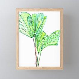 Elegant Fan Palm  Framed Mini Art Print