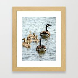 Animals of Nature Framed Art Print