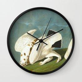 American Ptarmigan and White Vintage Scientific Bird Illustration Wall Clock