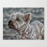 westie Canvas Prints featuring Westie Love by Clare Bevan Photography