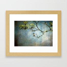 Lucky Bird Framed Art Print
