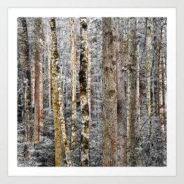 Camo In The Woods Art Print
