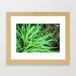 LongLeaves Framed Art Print