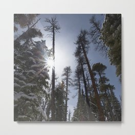 Watercolor Landscape, Bierstadt Trail 09, RMNP, Colorado Metal Print