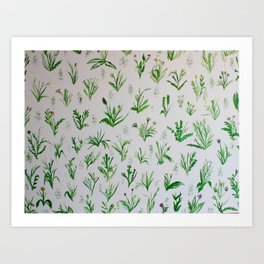 Various Plants and Weeds Art Print