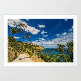 Coromandel Coast Art Print