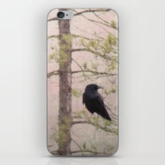 Spring is in the air iPhone & iPod Skin