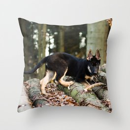 Cold snout playing in the forest Throw Pillow