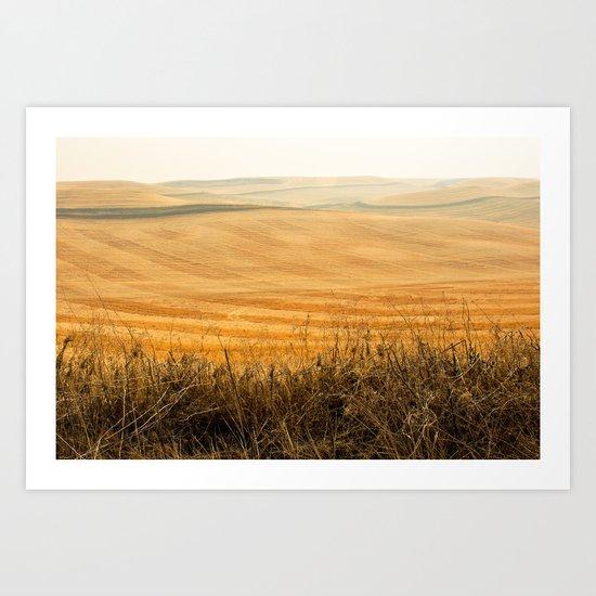 Golden Fields after Harvest Art Print