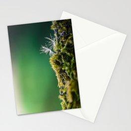 Dandelion Moist Stationery Cards