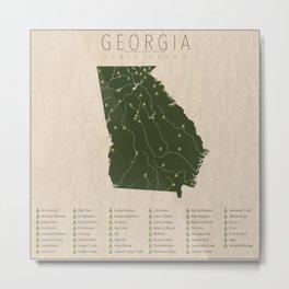 Georgia Parks Metal Print