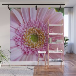 Pink Gerbera Flower in Detail with Yellow Bits Wall Mural