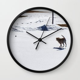 Chasing the Snowball Wall Clock