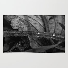 Black and white raindrops on grass Rug