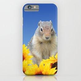 Marmot in sunflower Field iPhone Case