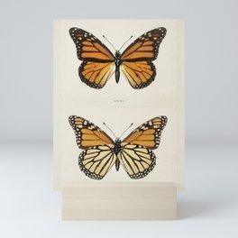 Monarch Butterfly Vintage Mini Art Print