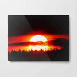Sun in the Trees and Clouds Metal Print