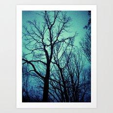 Blue Winter Trees Art Print