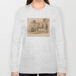 Vintage Domestic Sheep Illustration (1874) Long Sleeve T-shirt
