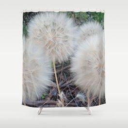 Seedheads Shower Curtain