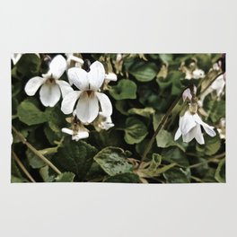 Wild White Violet; Take A Chance On Happiness Rug