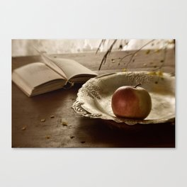 Still life with an apple and a book Canvas Print