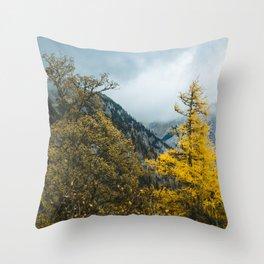 Mountains of Austria. || Autumn in Snow Alps. || Schneealpe. || Österreich. Throw Pillow