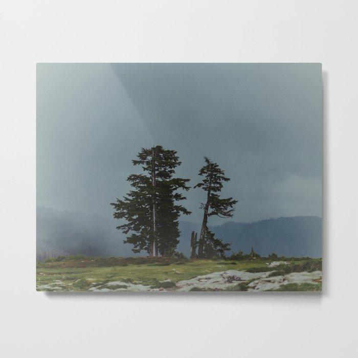 Magic Northwest Forest Metal Print
