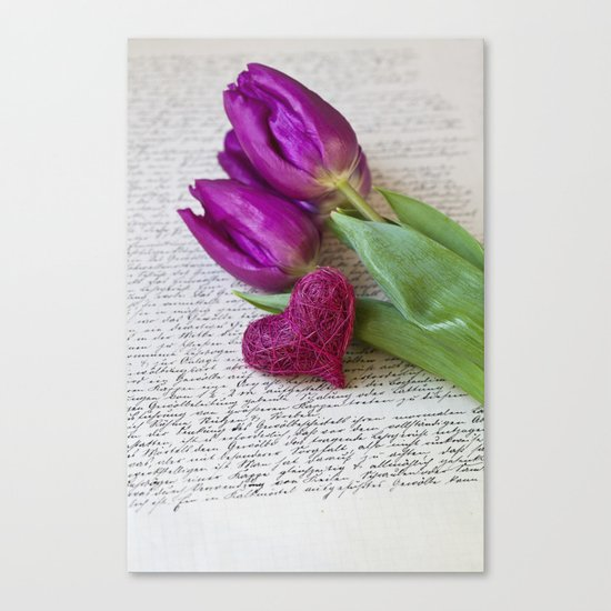 pink spring Tulips with heart Canvas Print
