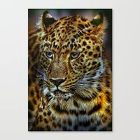 jaguar Canvas Prints featuring Jaguar by WonderfulDreamPicture
