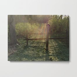 Peaceful Forest Bed Metal Print