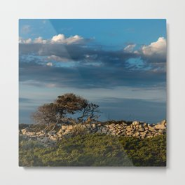 Wood, stone and clouds Metal Print